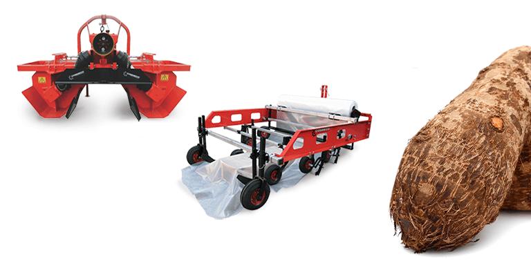 Le attrezzature agricole per avviare una coltivazione di tubero Yam: baulatrici regolabili e pacciamatori