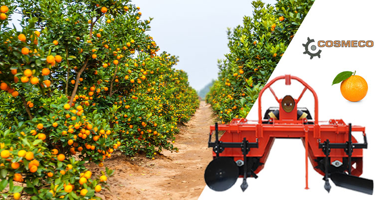 The machinery and equipment for growing citrus plants