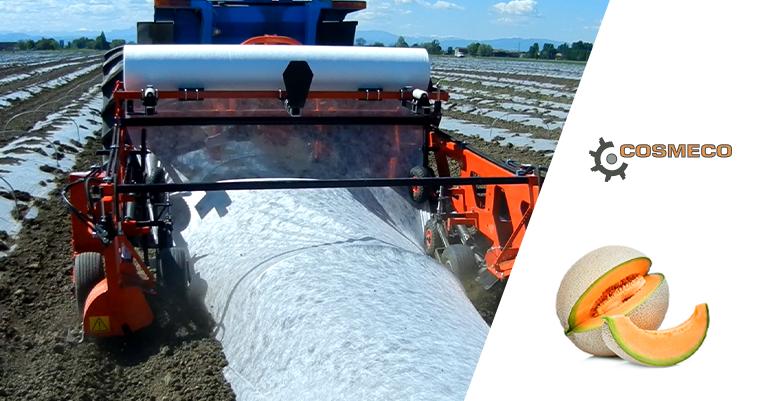 Le macchine agricole adatte a coltivare i meloni
