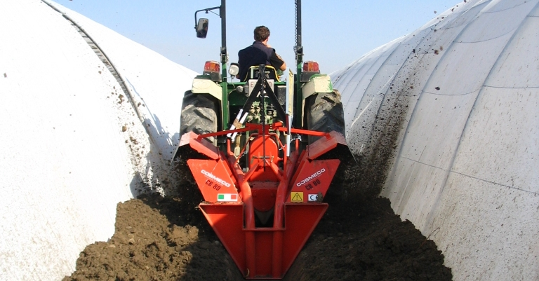 Melon cultivation with CB 80 machinery for covering greenhouses